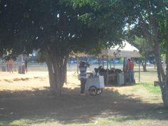 E5 - Em tempos de calor, vendem-se bastante suco natural e água de coco no carrinho.