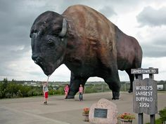 the World's Largest Buffalo in Jamestown, about an hour east of the Sandhill Crane, or two hours east of Bismarck. Built in it was North Dakota's first giant roadside attraction. Oh The Places You'll Go, Places To Visit, Wisconsin, Michigan, Roadside Attractions, Roadside Signs, World's Biggest, Travel Usa, Travel Info