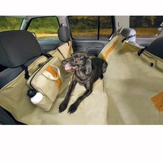 best gadget ever - keeps them in the back seat and preserves your car seats!   # Pin++ for Pinterest #