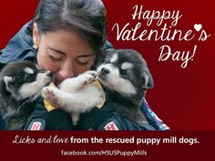 The Humane Society of the United States - Valentine's Day