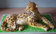 Food!: Totally Creative Cakes!