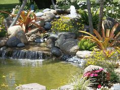 Image detail for japanese style indoor garden photos for Koi pond zoning