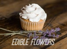 The Edible Garden: Flowers for Foodies - Rolling Green Nursery List Of Edible Flowers, All Flowers, Allium Schoenoprasum, Pineapple Sage, Kitchen Containers, Edible Garden, Flower Making, Us Foods