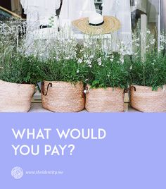 What would you pay?  #business #technology #systems #entrepreneurship