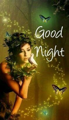 GOODNIGHT MY LOVE, RED ROSES ARE LOVE ROSES♡♡♡ Feliz Noche para todos mis seguidores les deseo gracias por sus visitas y ver mis pines me alegra que les este gustando lo que coloco . Gracias Dios y María los Bendiga.