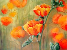 California poppies can be utilized in the exploration for porphyry copper deposits. California Poppy, Metal Stars, My Furniture, The More You Know, New Beginnings, Poppies, Canning, Pretty