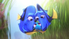 Warning: Minor spoilers if you have not yet seen the movie! Summary of Finding Dory Finding Dory picks up a little while after Finding Nemo ended. Nemo is still a kid and going to school with Mr. Disney Pixar, Walt Disney, Disney E Dreamworks, Disney Love, Disney Magic, Disney Art, Dory Baby, Nemo Y Dory, Disney Films