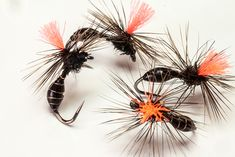 Montajes para la Trucha – Pescando a Mosca Best Fishing Reels, Fly Fishing Lures, Gone Fishing, Fly Tying, Trout, Ants, Dandelion, Caddis Fly, Guppy
