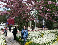 Dolores Park, Sidewalk, Travel, Viajes, Sidewalks, Trips, Pavement, Walkways, Tourism