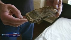 On Your Side: Samsung cell phone fire - Houston weather, traffic, news | FOX 26 | MyFoxHouston