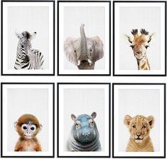 Baby Bedroom, Baby Boy Rooms, Baby Room Decor, Safari Animals, Baby Animals, Jungle Safari, Jungle Room, Baby Accessoires, Kids Bunk Beds