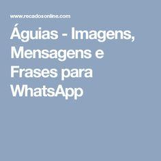 Águias - Imagens, Mensagens e Frases para WhatsApp