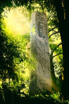 Maya stela in the jungles of Mexico Aztec Ruins, Mayan Ruins, Ancient Ruins, Ancient Art, Monuments, Places To Travel, Places To See, Beautiful World, Beautiful Places