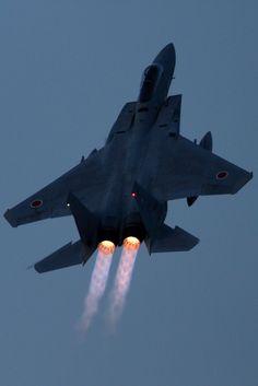 Mitsubishi F-15J Eagle                                                                                                                                                                                 もっと見る