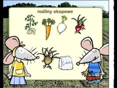 Rośliny uprawne - YouTube Toys For Boys, Multimedia, Montessori, Kindergarten, Preschool, Youtube, Teacher, Science, Comics