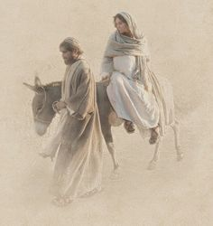 Bible Like a Freak: Who Would Have a Pregnant Woman Travel 82 Miles on...