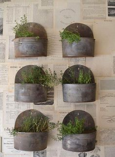 Lots of great ideas for easy container gardens.