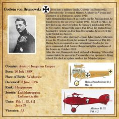 Biographie Godwin Brumowski Fighter Pilot, Fighter Aircraft, Plane And Pilot, Flying Ace, World War One, Luftwaffe, Thing 1, Military Aircraft, Wings