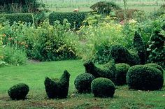BOX TOPIARY CHICKENS AND EGGS,FERNS AND PARSNIP FLOWERS. PRIONA GARDEN, HOLLAND/DESIGNER: HENK GERRITSEN