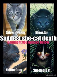 Comment below please! I think Siverstream or Yellowfang!<<< I love all of them but the only one I cried on was Bluestar so I have to go with her.