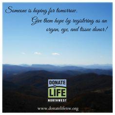 organ donation persuasive speech outline essays
