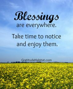 Blessings are everywhere. #blessings #gratitude-quote #quotes #quote #vip #passages #lovealways #loveforever #justtosay #love #grief #death #funeral