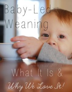 Baby-Led Weaning (why we love it, + some tips!) | redandhoney.com