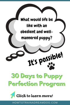 In this course, you will learn games that will help you train your puppy fast, improve your puppy's listening skills, get top tips to curb naughty puppy behaviors, and watch videos to learn each step needed to teach your puppy cues and commands quickly! Transform your puppy into a dream dog!  #dogtraining #puppytips #HowToTrainADreamDog