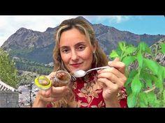Cómo hacer STEVIA EN POLVO/LÍQUIDO 0% CALORÍAS. AZUCAR O EDULCORANTE: DIABETES, OBESIDAD by PILAR - YouTube
