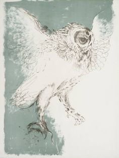 Natural World: Dame Elisabeth Frink Title Owl From Images 67 Date 1967 Medium Lithograph on paper Dimensions image: 780 x 594 mm Collection Tate Acquisition Presented by Curwen Studio through the Institute of Contemporary Prints 1975 Owl Art, Bird Art, Elisabeth Frink, Photo Illustration, Digital Illustration, Art Forms, Pet Birds, Printmaking, Art Prints