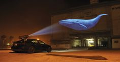 mobile projection // racing extinction // Obscura Digital