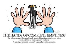 If you are looking to find the best strategy to handle chewing problem in your dog home training next the article will give you the right information which will assist you to. Greyhound Art, Italian Greyhound, I Love Dogs, Puppy Love, Hounds Of Love, Lurcher, Grey Hound Dog, Cartoon Dog, Dog Cartoons