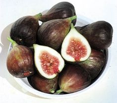 Celeste Figs.  Considered the most widely planted fig east of the Mississippi River.Tolerates lower temperatures than any fig other than Brown Turkey. Medium size fruits, violet skin, flesh can be white to rose in color. Firm, juicy, and sweet. Dries beautifully. Shipped spring only. Zones 6-9