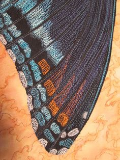 Thread Sketching Tutorial: Butterfly Wings Step by Step - Quilting Daily