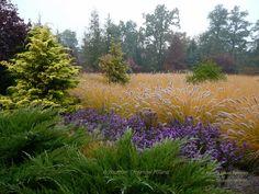 Arboretum Trojanów Poland https://www.facebook.com/media/set/?set=a.597996470263348.1073741867.493957547333908&type=3