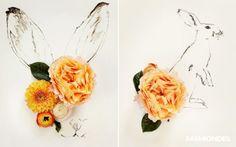 Цветочные композиции Kari Herer / Цветы, вазы и цветочные горшки /