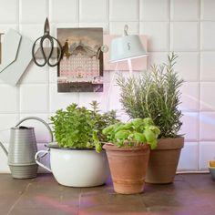 Cynara Lamp by Bulbo designed in Italy #MONOQI #homegarden