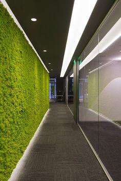Enisa & Verde Profilo® - MOSSwall® application | Verde Profilo