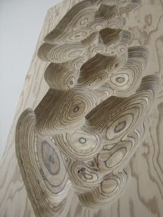I like the way the natural rings of the wood look in this sculpture. I also like the optical illusion that it creates.