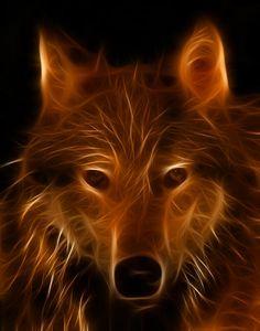 Fractal Wolf.
