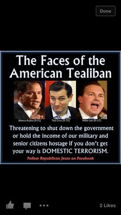 What the Republican/Tea Party is doing IS domestic terrorism.  I am  counting the days to the next election....we need to vote these self-serving parasites out of our government.