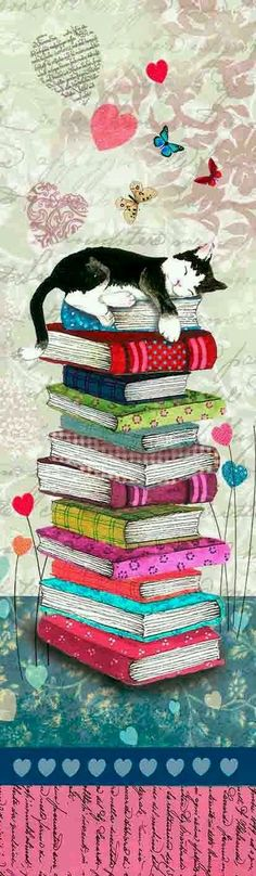 cat, sleeping, books, covers