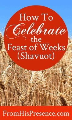 How to celebrate the Feast of Weeks - the Biblical feast of Shavuot! Even Gentiles can celebrate this feast as a celebration of Christ. Sukkot Recipes, Feasts Of The Lord, Jewish Calendar, Feast Of Tabernacles, Jewish Festivals, Christian Holidays, The Tabernacle, Sunday School Lessons, Bible Lessons