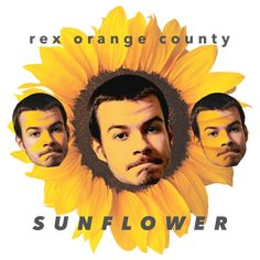 Rex Orange County Sunflower Art Print by skiggyy Photo Wall Collage, Picture Wall, Indie, Dorm Posters, Orange Country, Sunflower Art, Poster Prints, Art Prints, Poster Wall