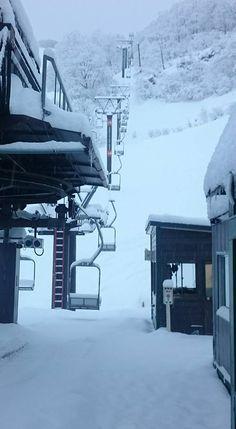 Myoko Snow Report 12 January 2016