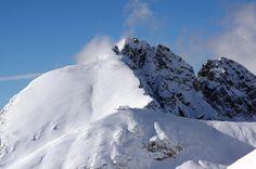 SNOW SAFARI | MERANO 2000 | SNOWCAMPITALY | Quando Merano 2000 si concede nel pieno del suo splendore, ammantata da leggerissima neve fresca ed illuminata da una calda luce solare, al cospetto di un cielo estremamente terso che mette in risalto eccezionali quinte scenografiche quali Dolomiti Orientali, Dolomiti di Brenta, Gruppo dell'Ortles, Alpi Venoste, Gruppo di Tessa, Alpi Passirie e Alpi Sarentine, allora la performance artistica non potrà che essere di assoluto valore. snowcamp.it