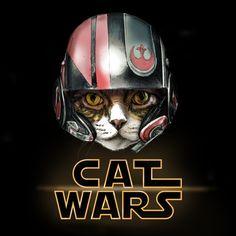 Cat Wars Dameron Art Print