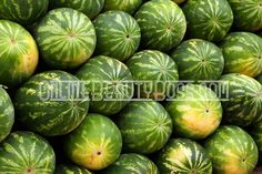 Introducing you to watermelon designs that have been created out of this most nutritious fruit. Carving watermelons into baskets for fruit salad. things-i-want-to-try Types Of Watermelon, Watermelon Designs, Green Watermelon, Watermelon Diet, Watermelon Farming, Watermelon Pictures, Watermelon Turtle, Watermelon Punch, Watermelon Festival