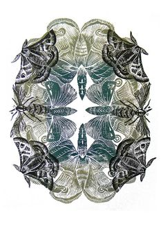 Moth Lino cut print by Amanda Colville via Flickr