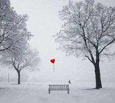 black and white drawing with one red heart balloons - Yahoo Image Search… My Love Story, Winter Love, I Love Heart, Small Heart, Red Balloon, Heart Balloons, Heart Art, Belle Photo, Color Splash